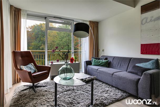 Ruim gerenoveerd appartement