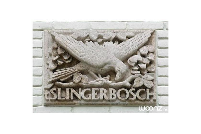 Slingerbosch in Huizen - Domus Magnus (12)