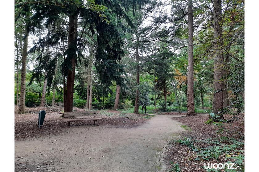 Bos met rolstoelpad nabij Acaciastaete