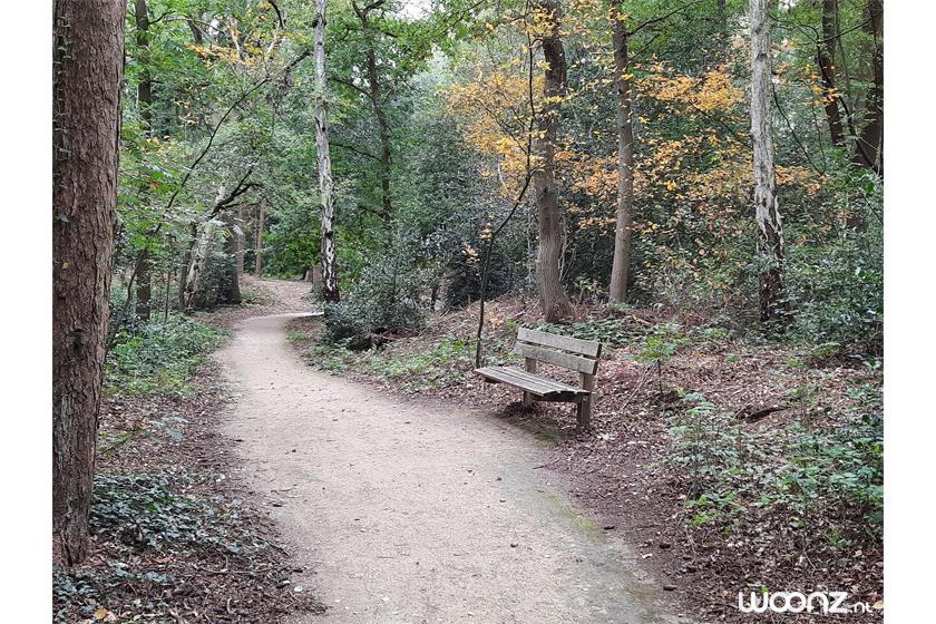 Bos met rolstoelpaden nabij Acaciastaete